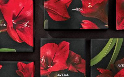 AVEDA – Weihnachtsangebote